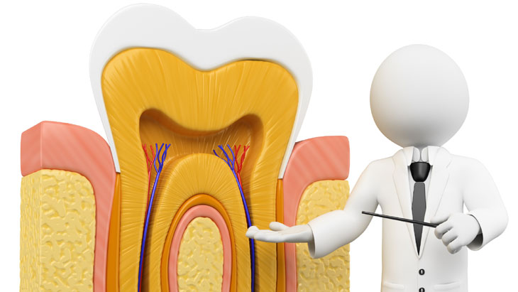 Dental insurance : Dental implant cover