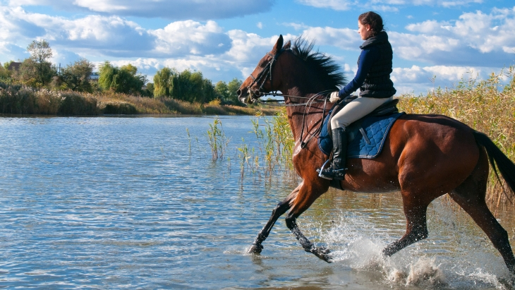 Horse-riding injuries: treatment and prevention