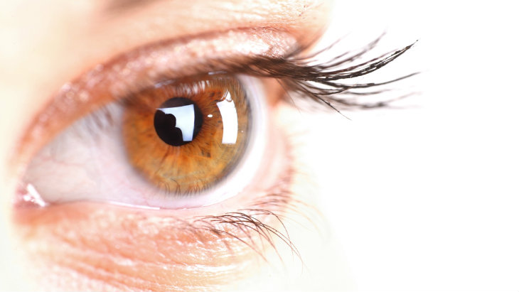 Living glasses free after cataracts